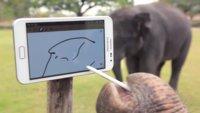 Wenn Elefanten mit Smartphones spielen und Selfies machen
