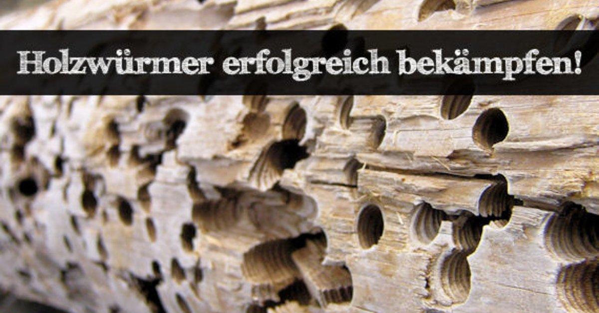 mittel gegen holzwurm mittel gegen holzwurm with mittel gegen holzwurm excellent fragnge des. Black Bedroom Furniture Sets. Home Design Ideas