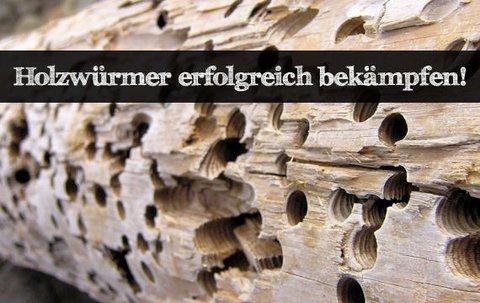 Ratgeber Holzwurm Bekampfen Die Besten Tipps Giga