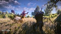 The Witcher 3 - Wild Hunt: Abermals verschoben!