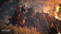 The Witcher 3 - Wild Hunt: Neue Artworks veröffentlicht