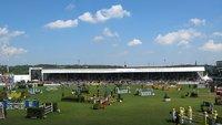 Weltreiterspiele: Nationenpreis im Springreiten im Live-Stream & TV