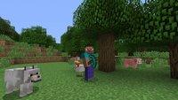 Minecraft: Verfilmung nicht vor 2017/2018 & PS Vita-Termin