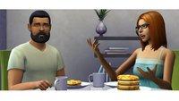 Die Sims 4 mit Crack und kostenlos spielen? Nicht mit Maxis!