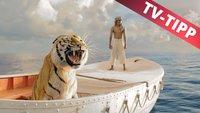 Life of Pi im Stream online und im TV: Heute auf Pro7