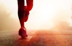 Die perfekte Fitness-App: Ein...