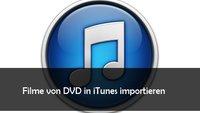 DVD in iTunes importieren: so geht's mit kostenloser Freeware