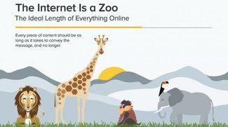 Schreiben im Netz: Die perfekte Länge von Posts, Texten, Tweets & Co.