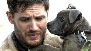 """THE DROP - Bargeld"" Kritik & Trailer Deutsch German Review   Tom Hardy 2014 [HD]"