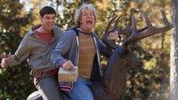 Kinocharts: Dumm & Dümmehr an der Spitze & Interstellar weiter stark