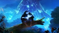Ori and the Blind Forest: Definitive Edition für PC wird verschoben