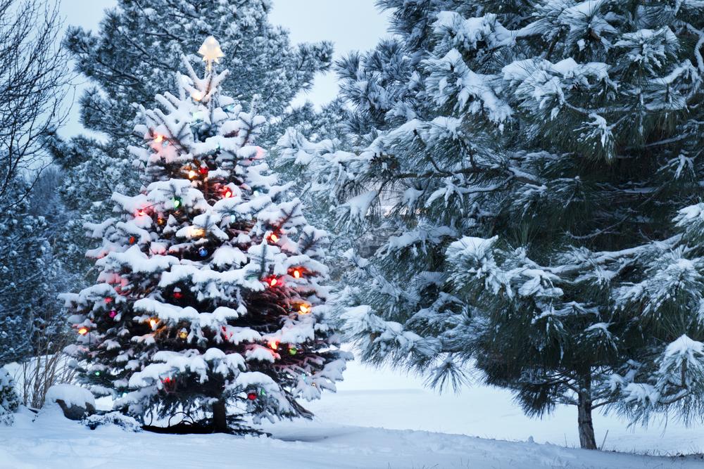 Weihnachten 2015: Wetter, Schnee, Ferien, Urlaub & Datum der ...