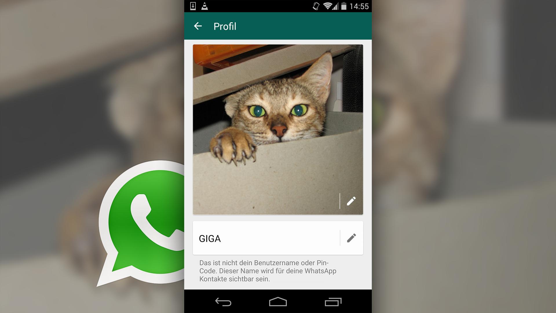 Ideen profilbilder whatsapp Profilbilder erstellen: