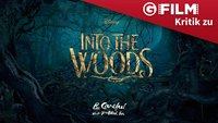 Into the Woods - Kritik