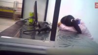 BBC-Dokumentation kritisiert Arbeitsbedingungen bei iPhone-Produktion