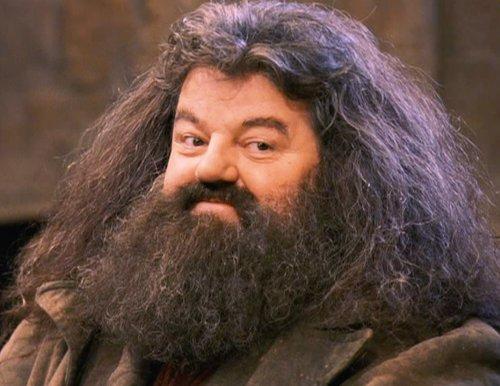 Hagrid Bart