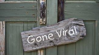"""Was heißt """"viral""""? Bedeutung und Definition viraler Videos"""