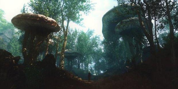 Skywind: Neuer Trailer zur Sheogorad-Region