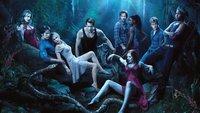 Abgesetzt! Viele beliebte Serien enden 2014 / 2015
