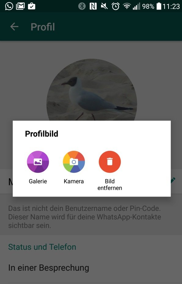 whatsapp eigenes profilbild