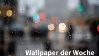 Wallpaper der Woche: Regentag [Download]