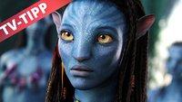 Avatar - Aufbruch nach Pandora im Live-Stream und TV: heute Abend auf Vox