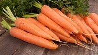 Minecraft: Karotten finden, anbauen und weiterverwenden - So gehts