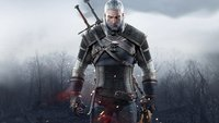 The Witcher 3: Hexer – Was sind sie?