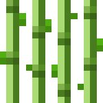 Minecraft Zuckerrohr Wächst Nicht