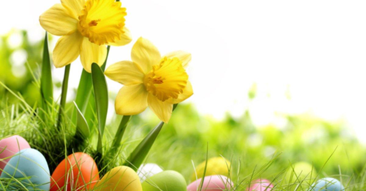 Hintergrundbilder Kostenlos Ostern sprüche zitate und gedichte zu ostern kurz witzig und zum