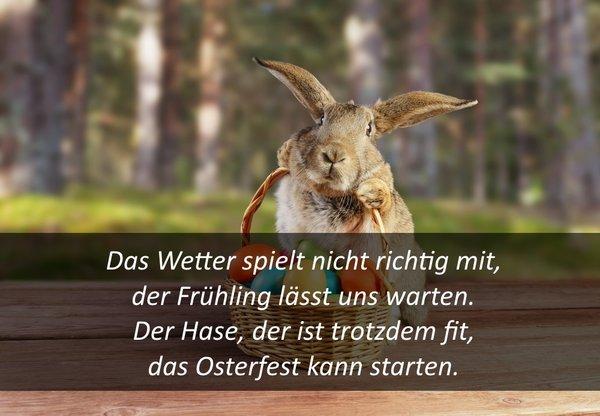 Spruche Zitate Und Gedichte Zu Ostern Kurz Witzig Und Zum Nachdenken