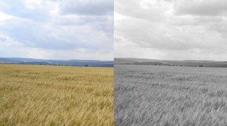 Photoshop: schwarz-weiß – so wandelt ihr Farbbilder um