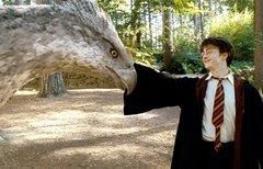 Besetzungscouch: Harry...