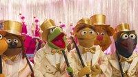 Die Muppets: Neue TV-Serie mit Kermit, Ms. Piggy und Co. in Planung