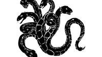 Hail Hydra: Definition und Ursprung des Memes