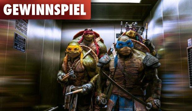 Gewinnt Action-Figuren der Teenage Mutant Ninja Turtles!