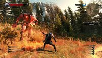 The Witcher 3: Frische Screenshots eingetroffen