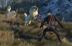 The Witcher 3: Wild Hunt:...