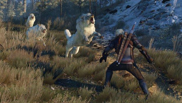 The Witcher 3 Wild Hunt: kostenlos von Nvidia