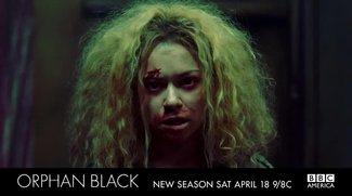Orphan Black Staffel 6: Wird die Serie fortgesetzt?