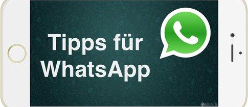whatsapp auf anderem handy wieder herstellen