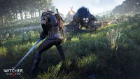 The Witcher 3: Toxine verändern Geralts Gesicht und weitere Infos