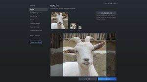 Steam-Avatar ändern: So passt ihr euer Profilbild an