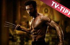 Wolverine: Weg des Kriegers im...