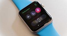 Checks auf der Apple Watch, der Dock- und Multitasking-Ersatz