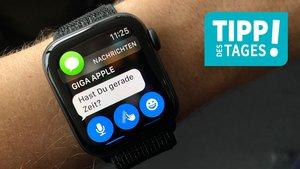 WhatsApp auf der Apple Watch nutzen – so geht's