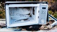 Mikrowelle schädlich? Das sind die Wissenschaftsfakten