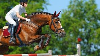 Pferdesport-Weltfest 2015 in Aachen im Live-Stream und TV heute online sehen (CHIO)
