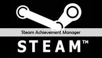 Steam Achievement Manager: Erfolge und Trading Cards freischalten