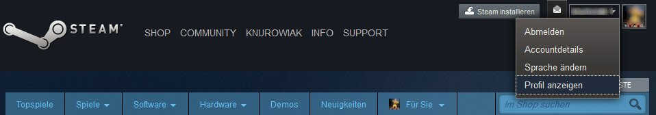Steam Profil Finden